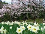 unitopia_sasayama_007_s2.jpg